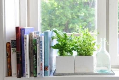 Ideas To Decorate Your Kitchen Window on ideas to decorate mirrors, ideas to decorate bedrooms, ideas to decorate sliding glass doors, ideas to decorate french doors, ideas to decorate fireplaces,