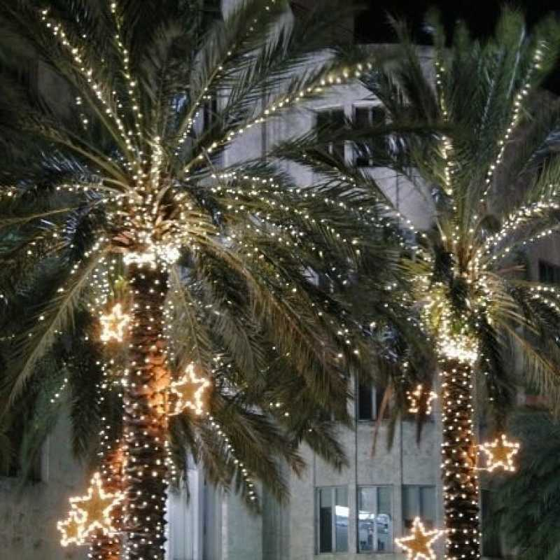 Xmas lighting ideas Led Deercreekvineyardcom Outdoor Christmas Lights Decorations To Bring Alive The Festive Tone