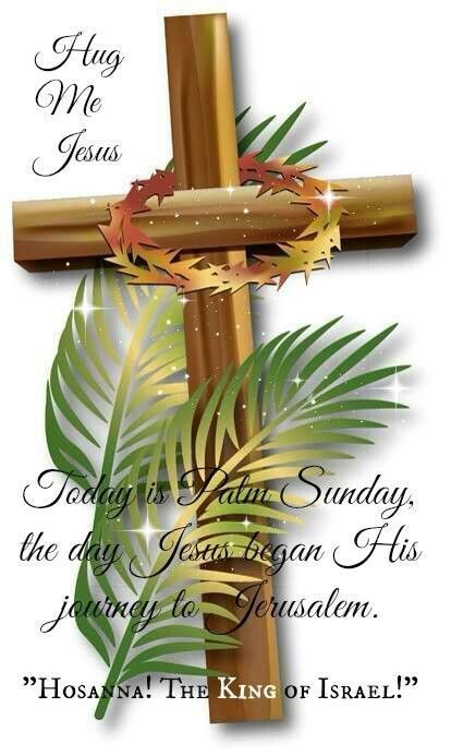 15 Palm Sunday Quotes That Are Faithful And Inspring Hike N Dip
